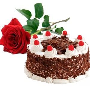 Combo Gift ( Cake – Flower)
