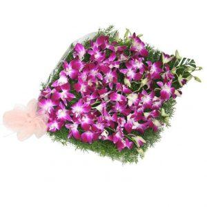 Violet Desire